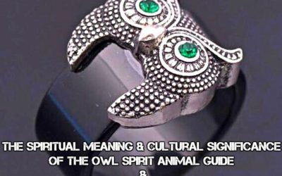 The Spiritual Meaning & Cultural Significance Of The Owl Spirit Animal Guide & Power Totem
